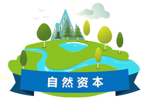 Natural Capital Icon CN Web