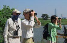 亨利与温蒂夫妇(中间)2016年10月于米埔自然护理区