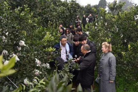 评委会于今年一月前往获奖项目在四川蒲江县的试点项目进行实地考察